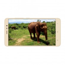 Xiaomi Redmi Note 3 3/32GB (Gold)